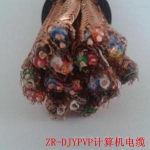 阻燃计算机电缆ZR-DJYVP