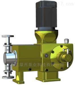 J10.0柱塞式计量泵