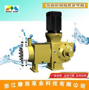 RH液压隔膜计量泵不锈钢-浙江摩西专业厂家