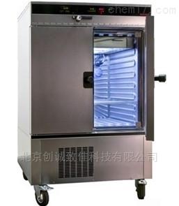 ICH256 德国Memmert恒温恒湿试验箱