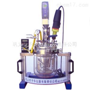 Reactor-5L 实验室均质乳化系统反应器低粘度液体搅拌