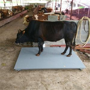 动物称重用1000kg小型地磅工厂直销