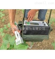 SYS-LGH 植物光合作用測定儀