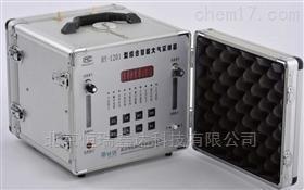 WHHY-1201 北京双路大气自动采样器