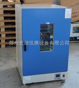 9140A 250℃实验室9140A立式鼓风干燥箱