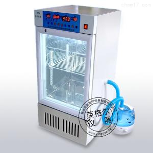 302A恒温恒湿培养箱