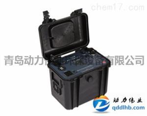厂家现货环境监测仪器用DL-E20便携式交直流电源(20AH)