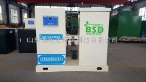 BSD-H 化验室污水处理器厂家,检验科污水处理设备