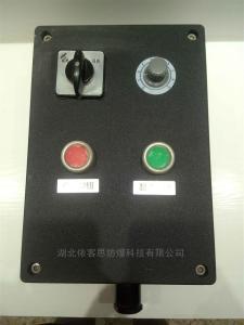 FZC-S-A1D2K1G一钮二灯一开关挂式三防操作柱