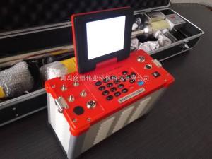 LB-62 烟气综合分析仪路博LB-62型安徽化工厂环保局专用仪器
