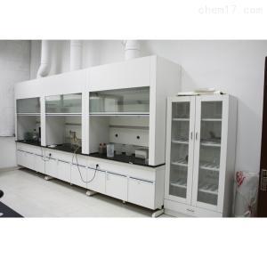 实验台 通风柜 实验室家具设备