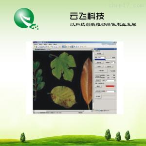 TX-1000 植物图像分析系统价格|植物图像分析仪系统批发|河南云飞