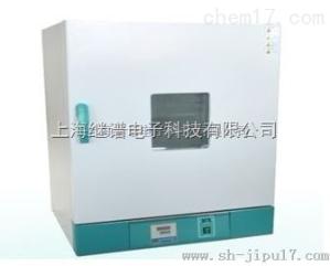 202电热恒温干燥箱