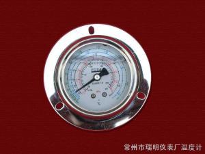 耐振壓力表(軸向帶邊型)