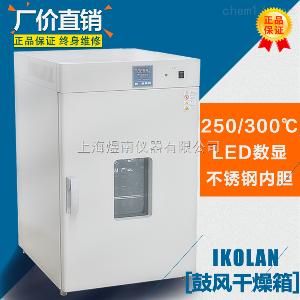 立式DHG-9140B 实验室干燥箱 300度工业烘箱 上海厂家