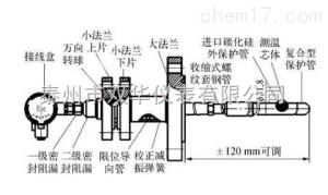气化炉专用多点可抽芯式阻漏式热电偶