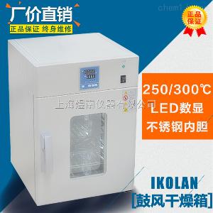 立式DHG-9070B 电热恒温鼓风烘箱 专业 高温干燥箱