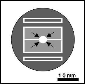 透射電鏡校準標樣