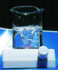 进口PTFE磁力搅拌器,搅拌子(四氟)