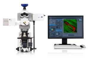LSM 710 NLO/LSM 7 MP双光子/多光子激光共聚焦显微镜