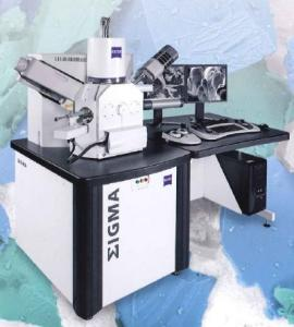 ZEISS ΣIGMA热场发射扫描电镜