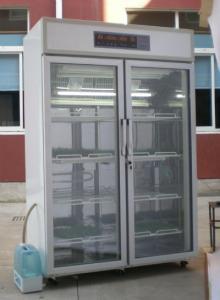 恒温恒湿培养箱|智能恒温恒湿箱
