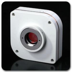 Fluorescent Camera