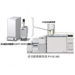 多功能热裂解器EGA/PY-3030D