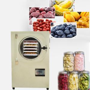 小型水果冻干机,果蔬真空冷冻干燥机