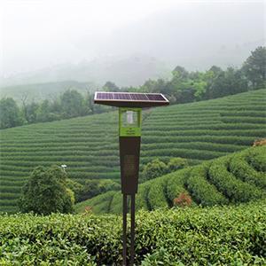 風吸式茶園殺蟲燈