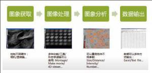 MetaMorph活细胞成像分析系统