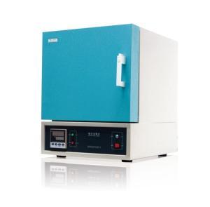 SX2-10T/TP箱式电阻炉