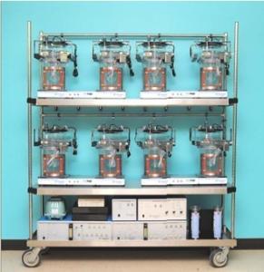 小鼠代谢(能量消耗)指标监测服务
