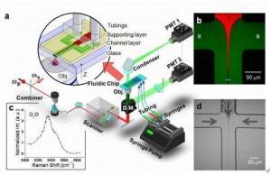 显微拉曼荧光成像综合测试系统
