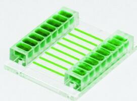 微流体细胞粘附分析芯片