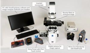 人体血液循环模拟系统