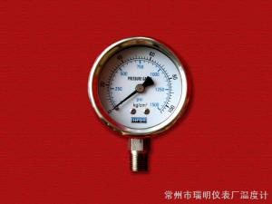 Y-60/63BF 不锈钢压力表