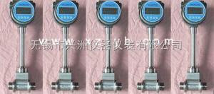 XZLUGB-B-DC01型直流供电型天然气流量计