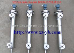 XZCAP-7000 XZCAP-7000系列智能电容式锅炉汽包液位计