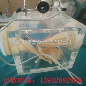 有机玻璃干燥箱 有机玻璃干燥箱 有机玻璃真空干燥箱 有机玻璃氮气干燥箱