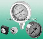 CKD压力表G401-W-P10