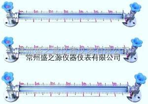 玻璃管带刻度标尺液位计