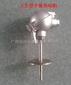 HZP/T-100热电阻