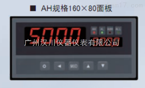 XSV/A-S21TOAOVO液位/容量(重量)显示控制仪
