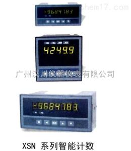 XSN/A-HL1T1K3B2V0N定量控制仪表