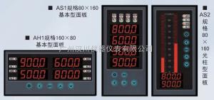 XSD4/A-H2IIT4B0S0V1N 多通道数字式仪表