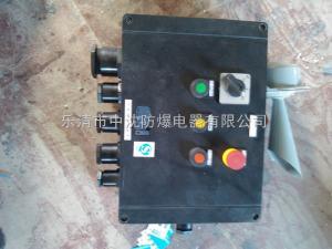 FXM-S防水防尘防腐照明配电箱