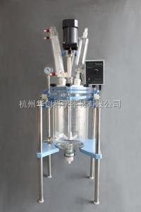 JR-S5 5L 双层玻璃反应釜