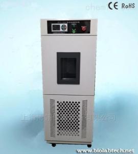 BTC-305 蓝电系统专用小型高低温测试箱
