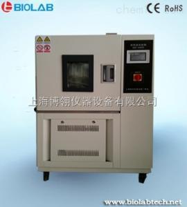 BPH-100S 恒温恒湿试验箱